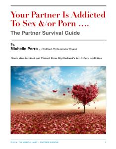 partner of sex addict porn addict