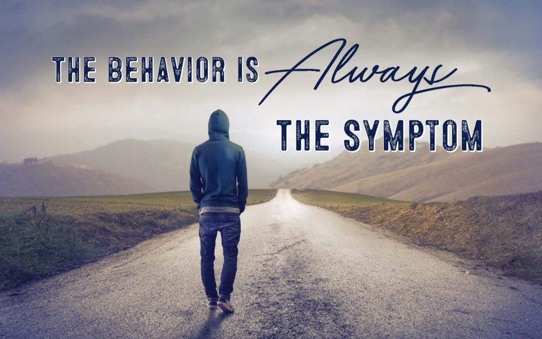 The Behavior Is Always the System
