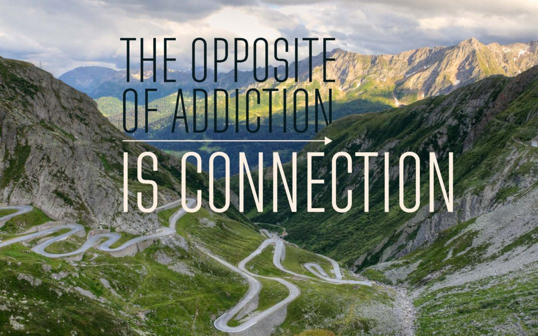 The Opposite of Addiction is Connection